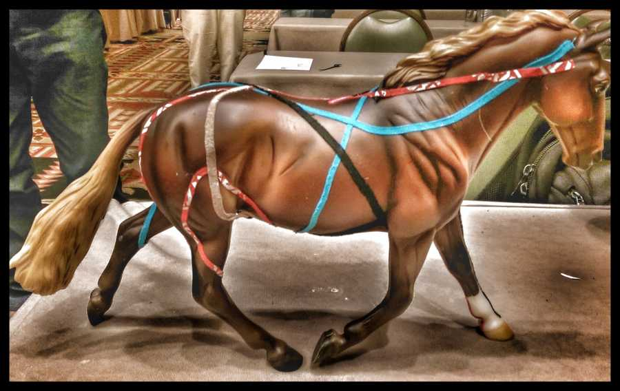 What is Equine kinesiology