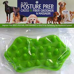 Posture Prep for Dogs